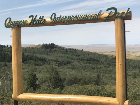 Fall is the perfect time to explore the Cypress Hills